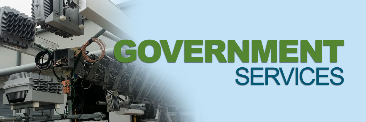 N-GOVERNMENT-SERVICES